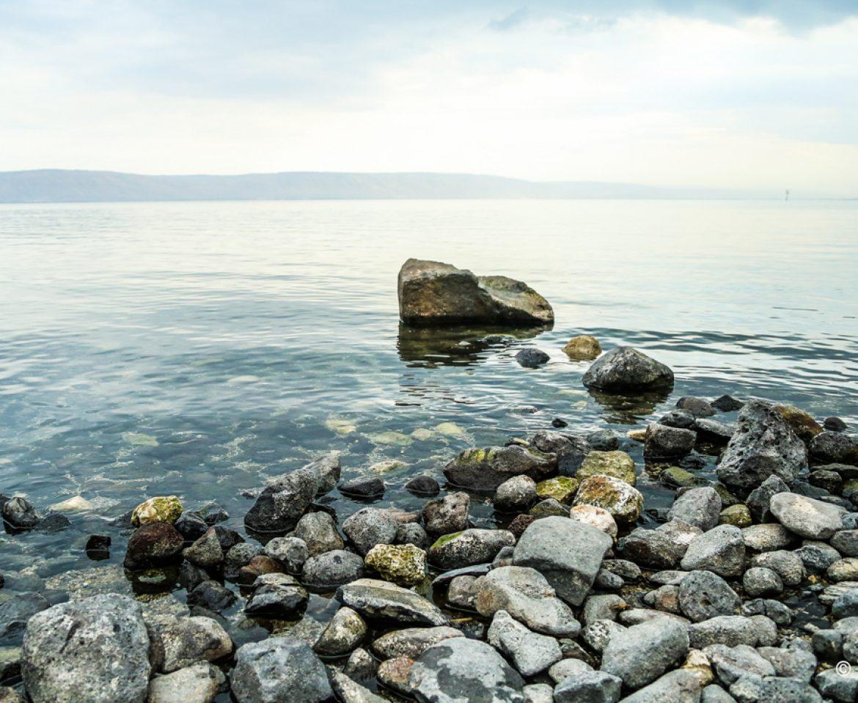 Galileea
